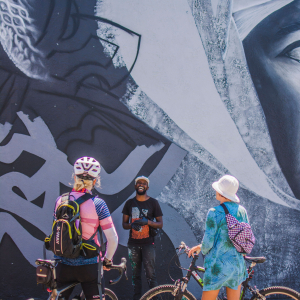 Guided Bicycle Tour - post 2021 festival
